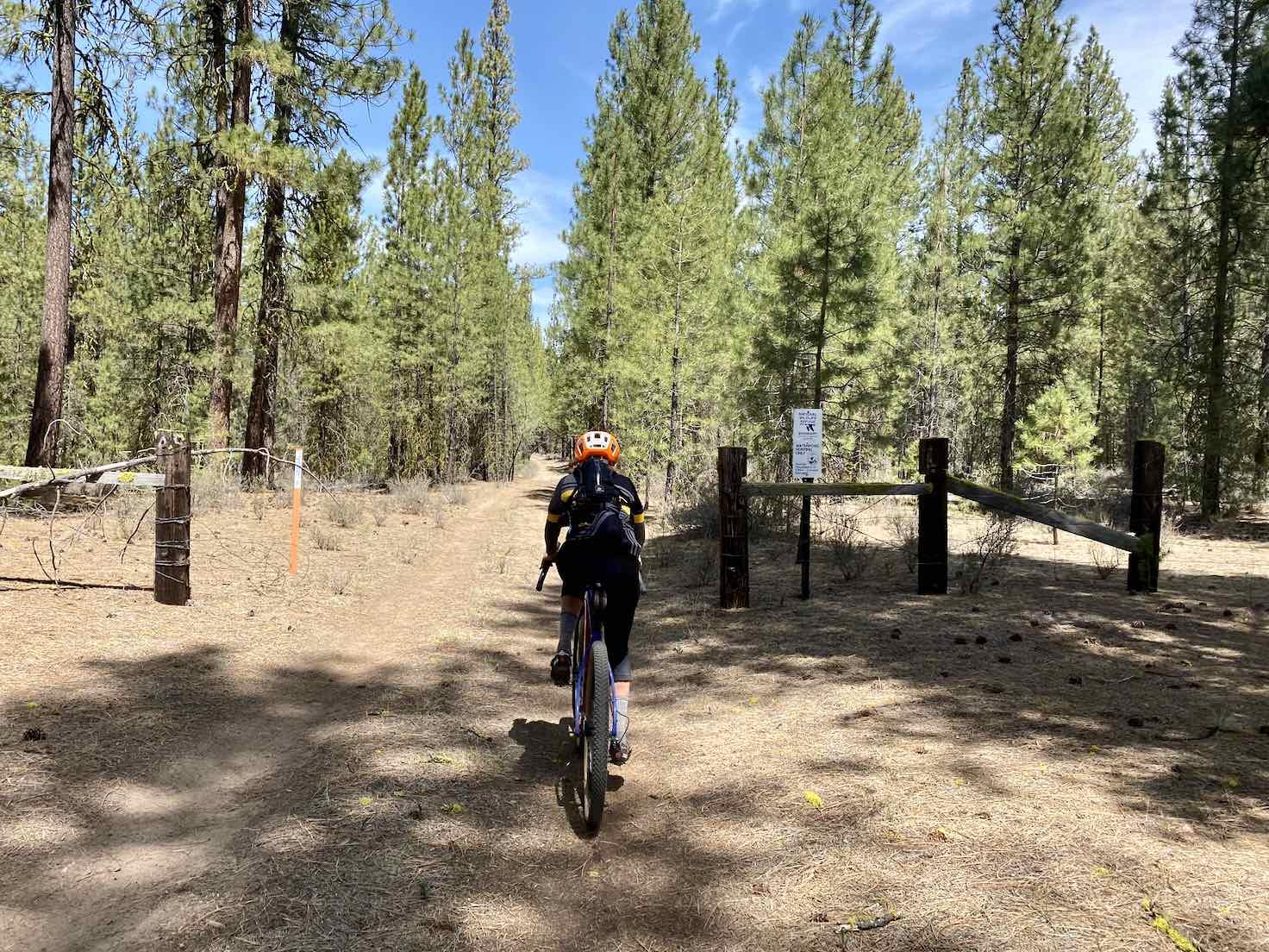 Gravel Girl riding across cattle guard near Wocus Butte.