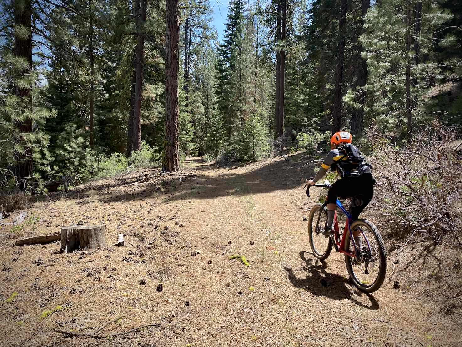 Gravel Girl ripping through some double-track roads in Winema National Forest.