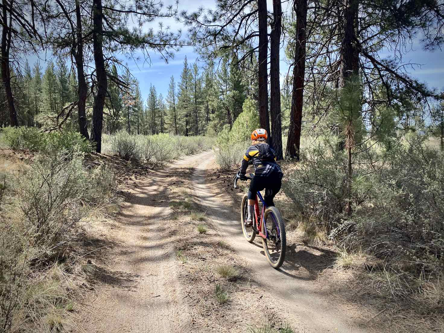 Gravel Girl riding through Winema National Forest on dirt road.