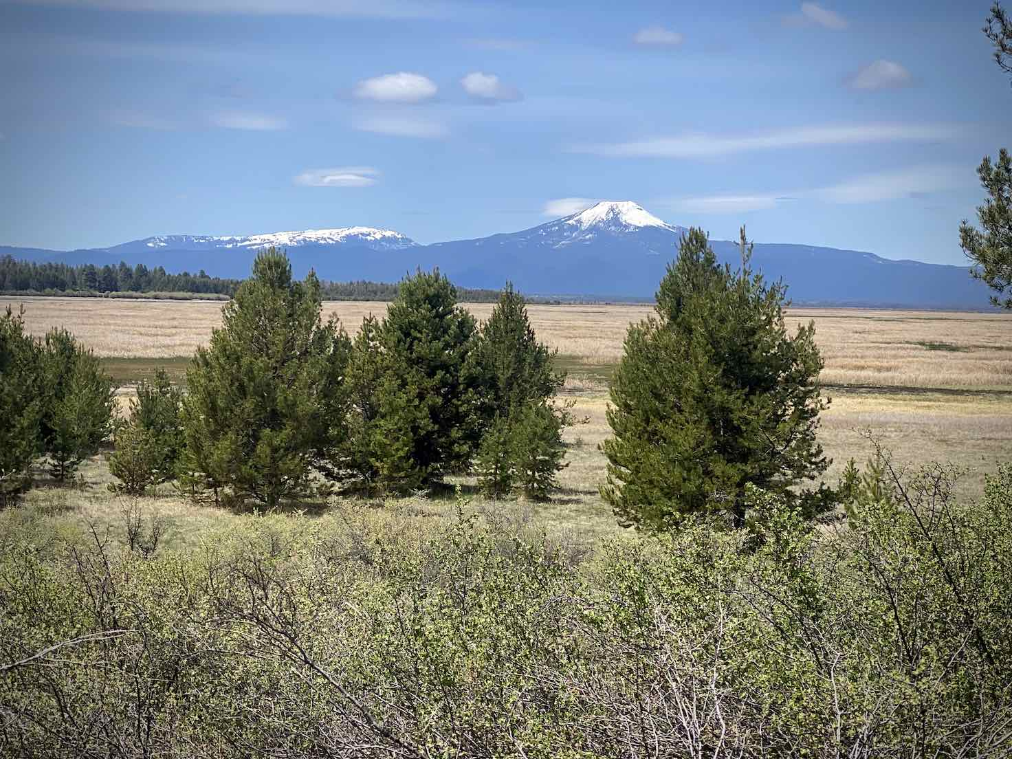 View of Mt Scott across marsh and grassy plains.