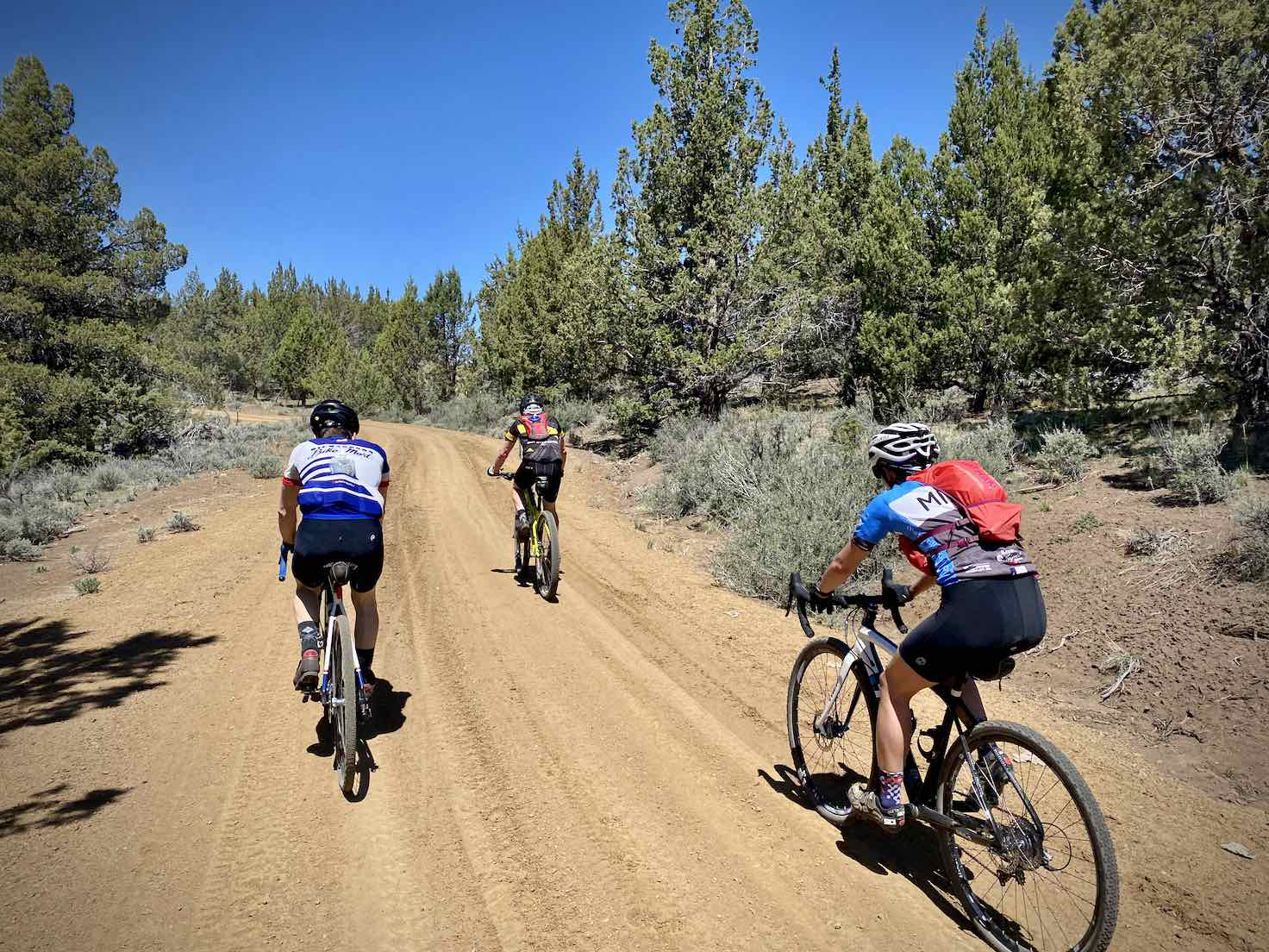 Gravel cyclists on Little Bear Creek road climbing hill.