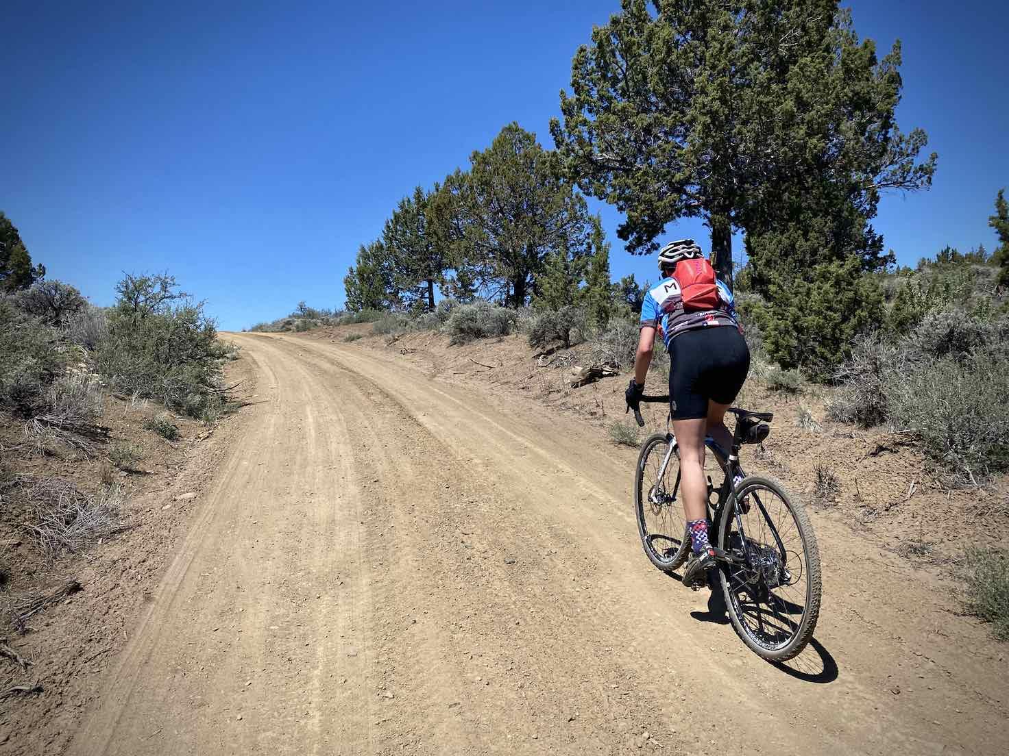 Woman gravel cyclist climbing towards the peak of the Little Bear Creek Road.