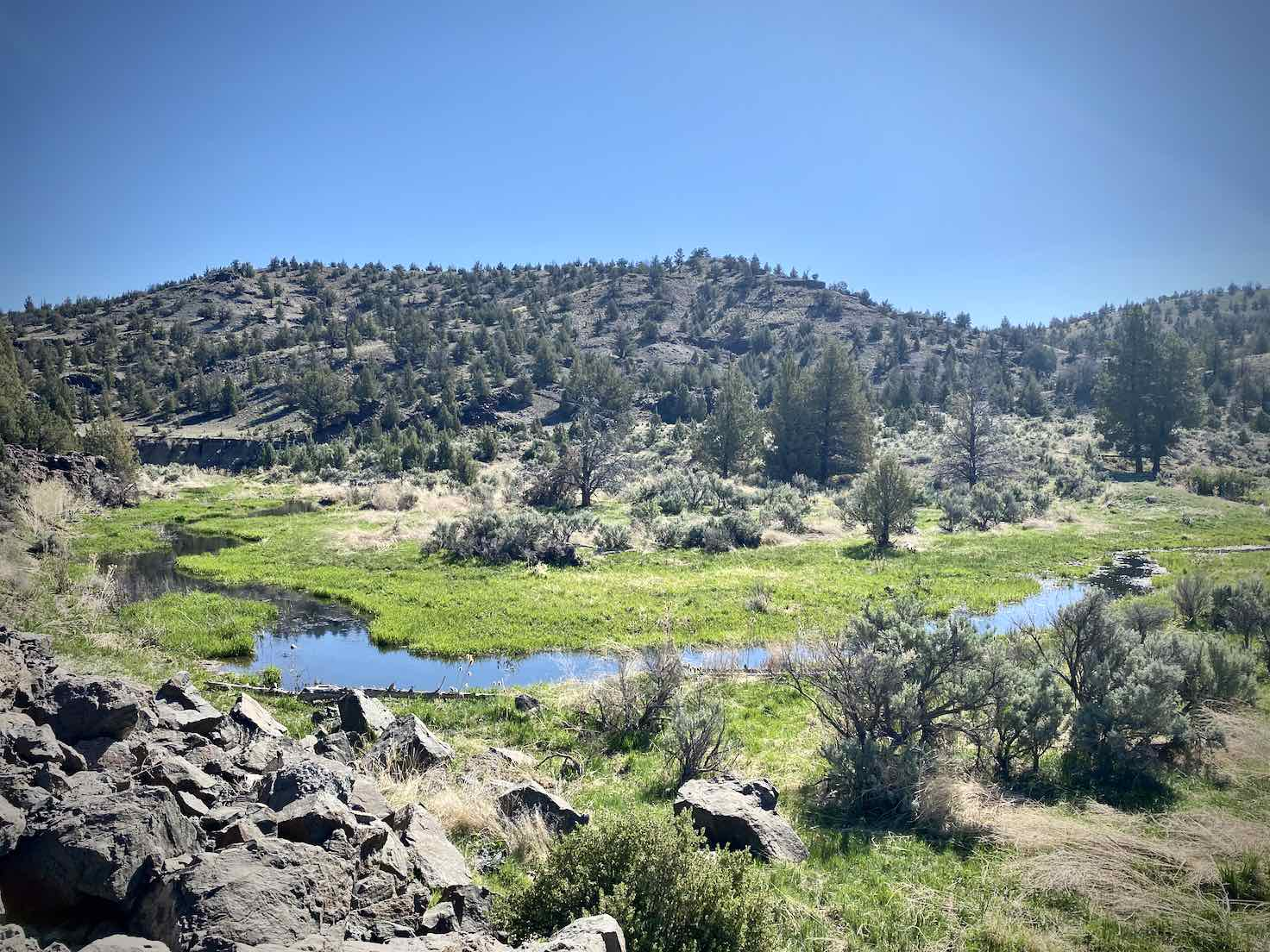 Bear Creek as seen from the Crooked River Highway.