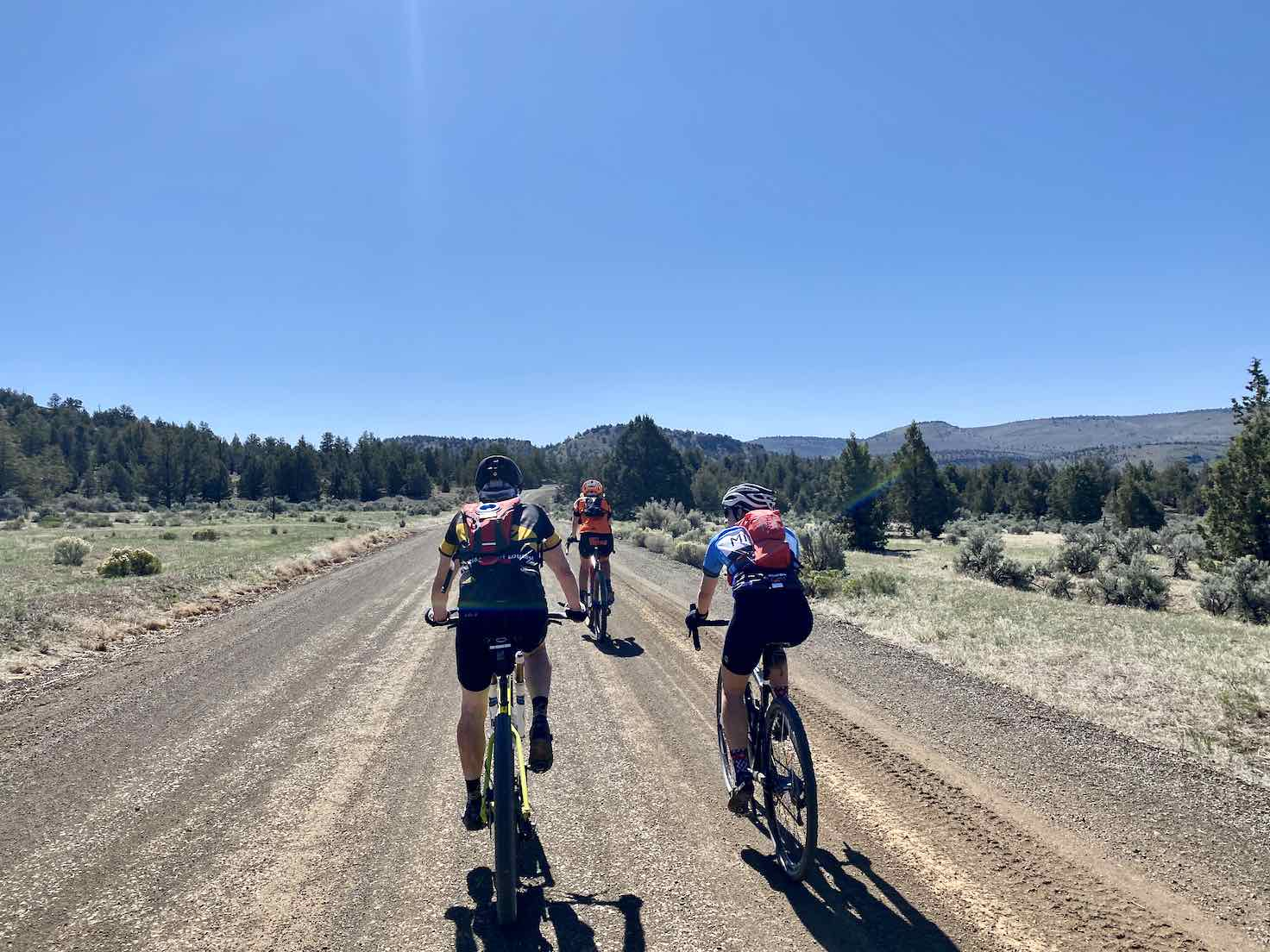 A group of cyclists riding Bear Creek road in Central Oregon.