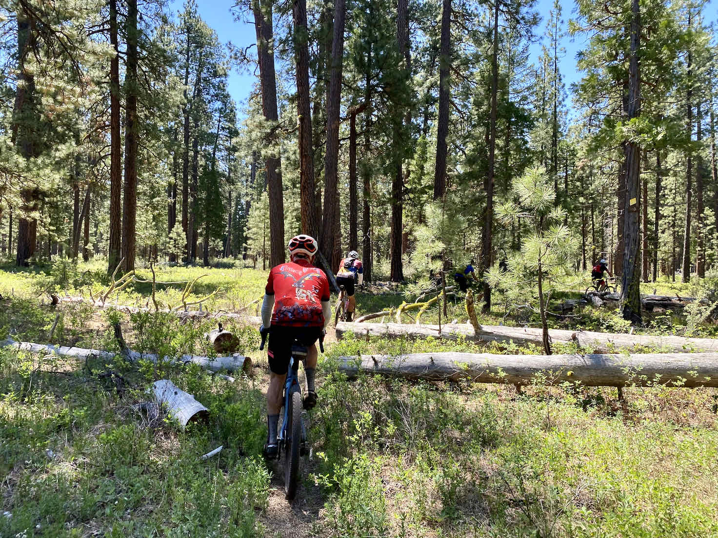 Riding the single track on the east side of Black Butte with gravel bike.