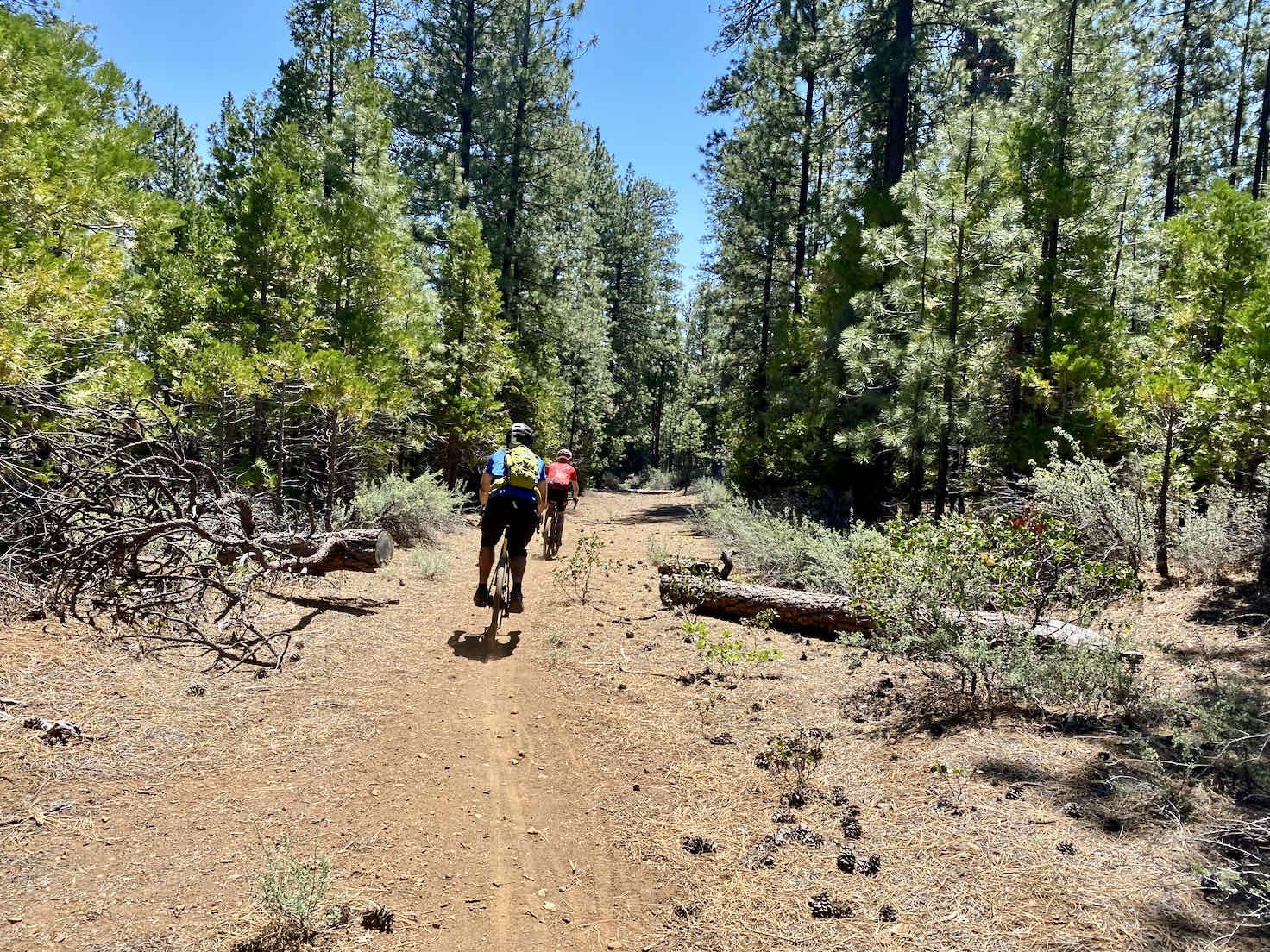 Descending lumpy gravel road on the lower Butte trail.