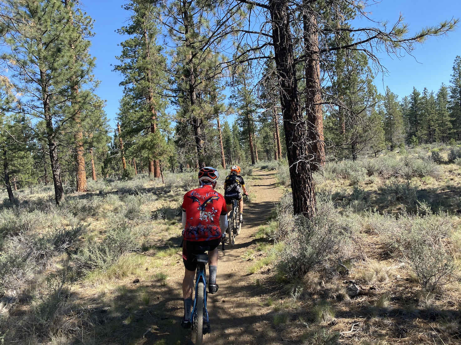 Gravel cyclists on Sisters Tie Trail.