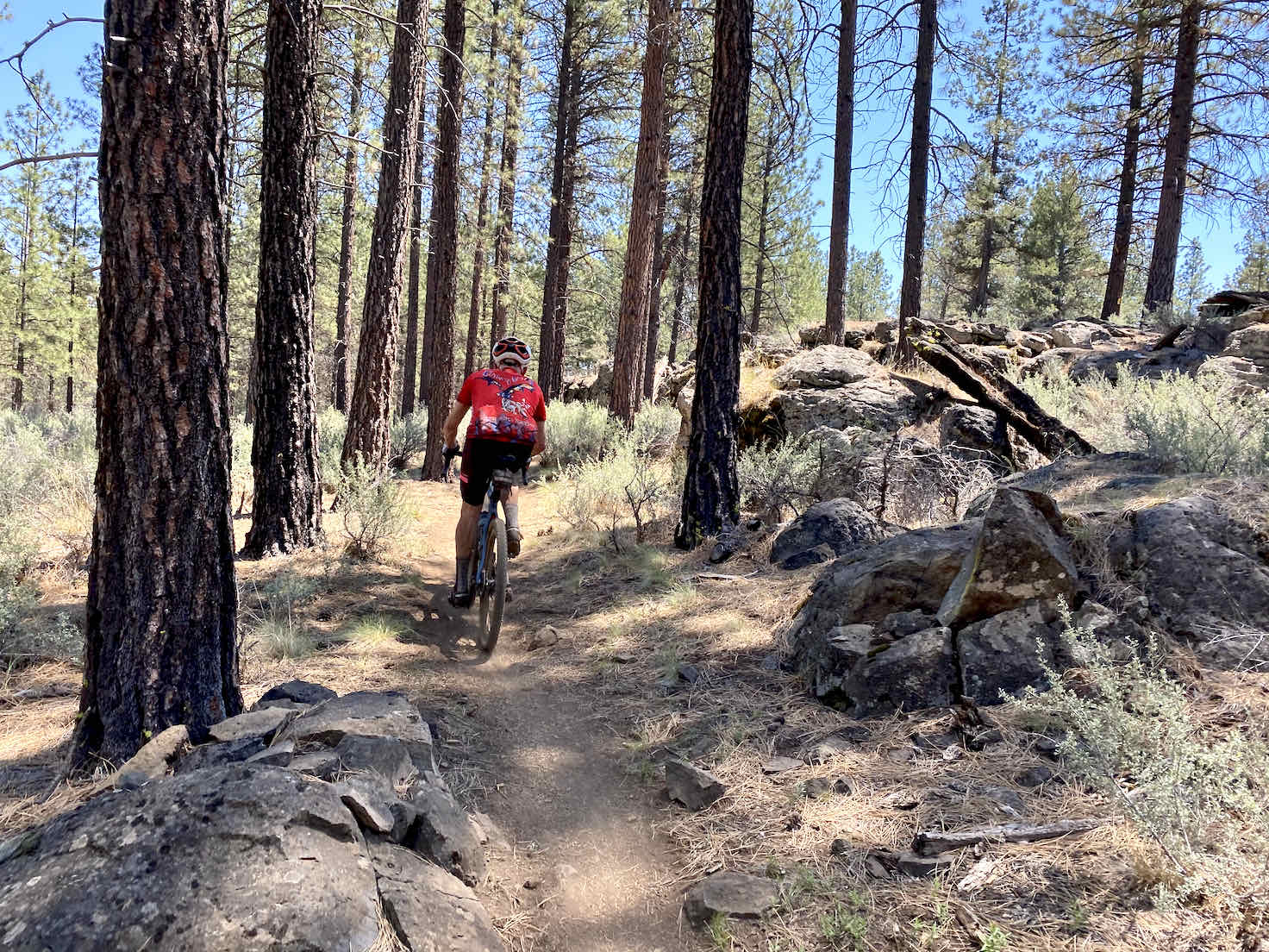 Cyclist riding past rock outcropping on Sisters Tie Trail.