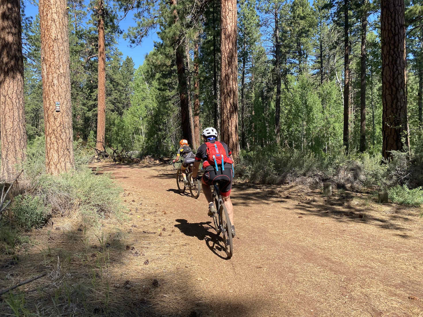 Cycling through Indian Ford Campground.