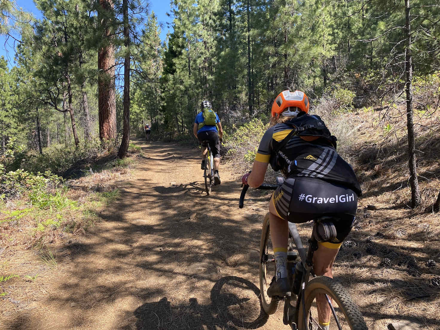 Gravel cyclists riding the forest service roads around Black Butte,.