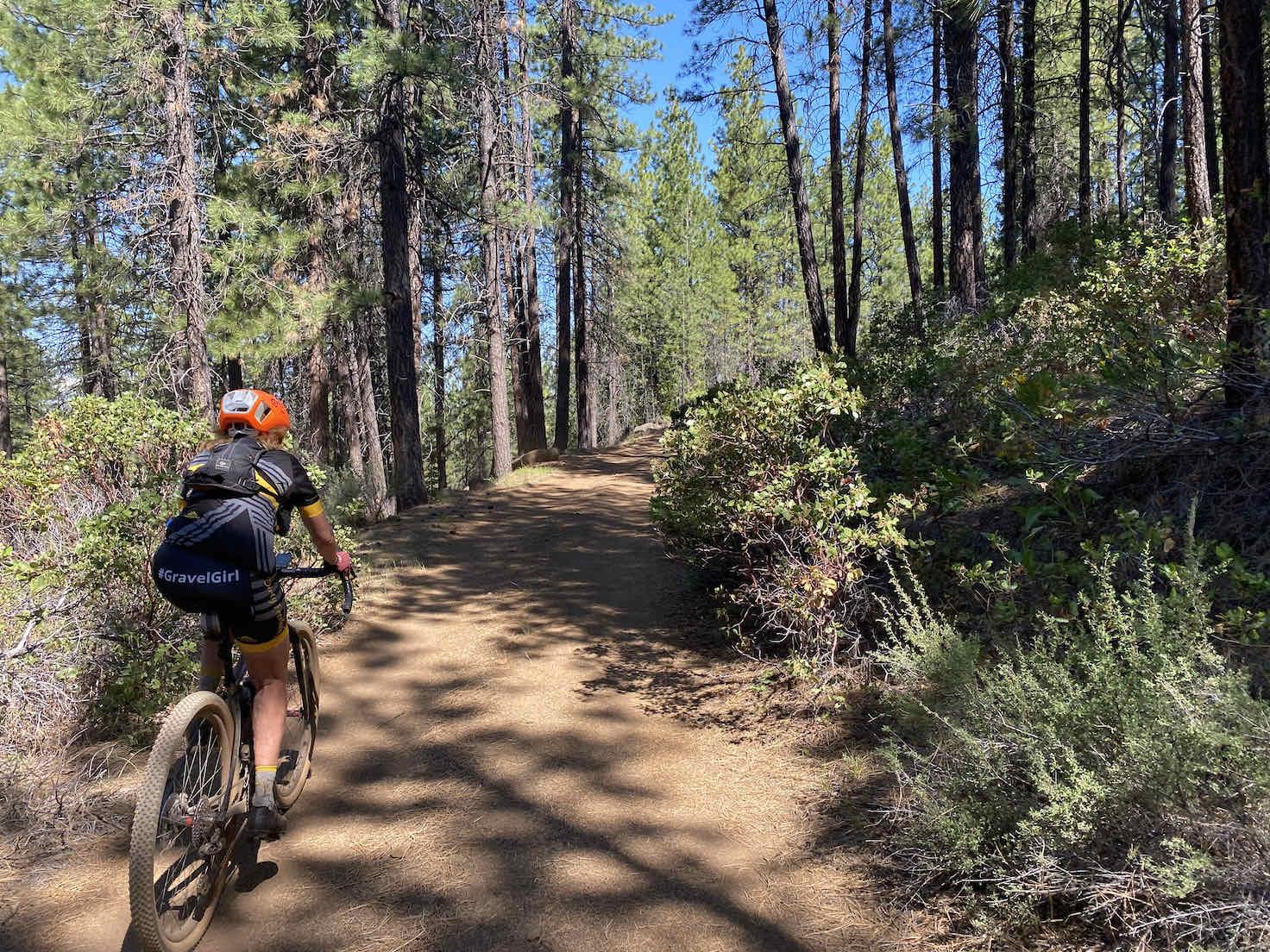 Gravel riding through the Ponderosa trees on Black Butte.